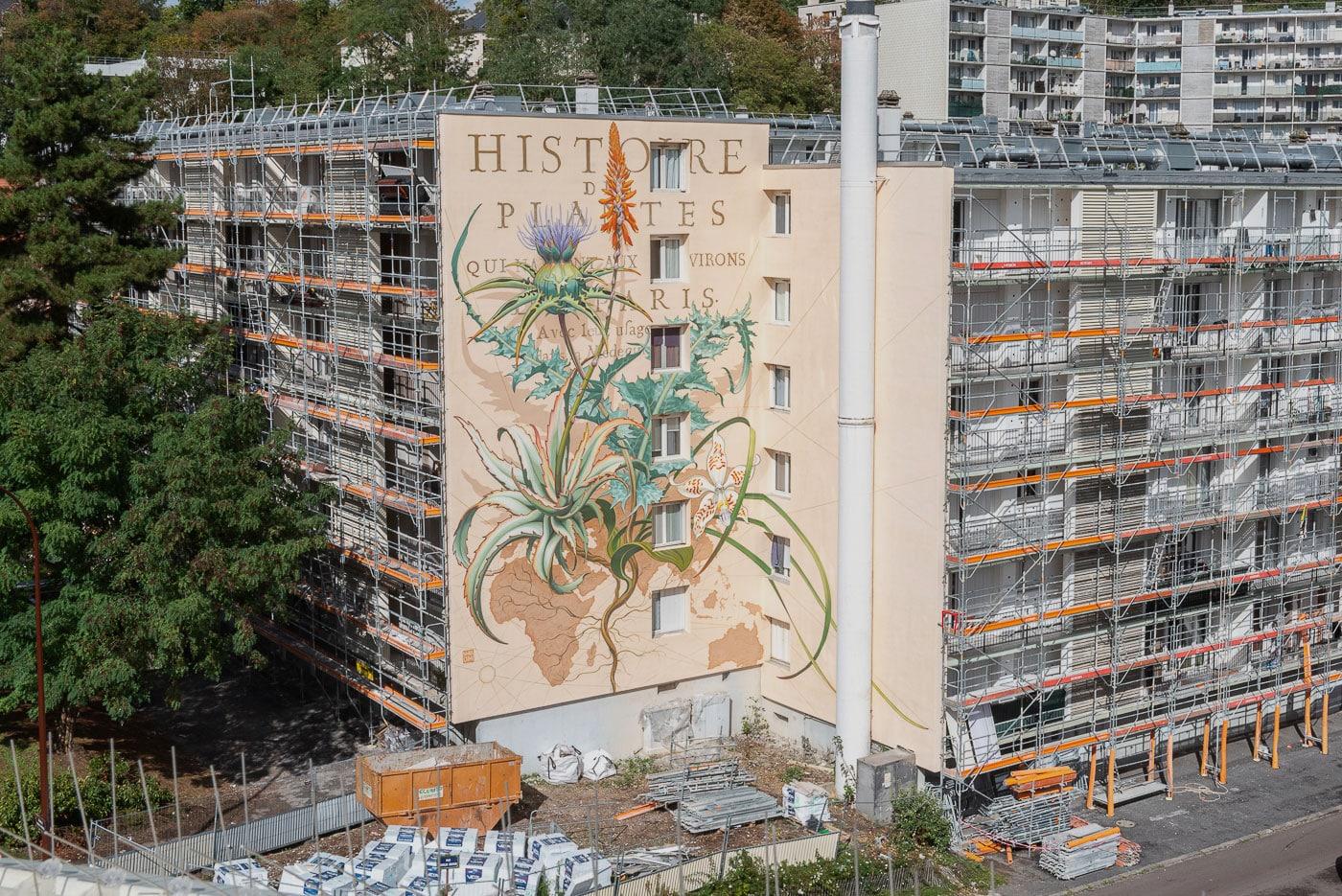 Street Art Operation : PROJET #1096 VERSAILLES